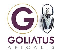 Goliatus - Agence de communication
